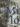 Alberto Nessi: «Miló»