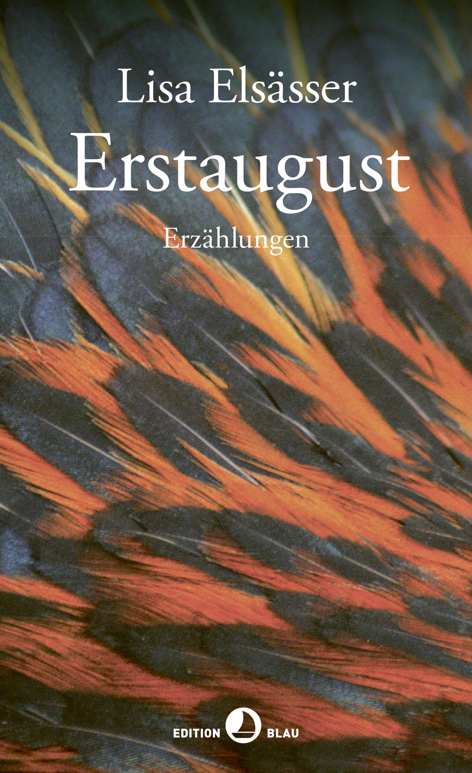 Lisa Elsässer:  «Erstaugust. Erzählungen.»